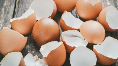 Yumurta Kabuğu Neye Yarar, Faydaları Nelerdir